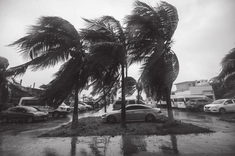Winds lash palm trees after the passage of Hurricane Delta, in Cancun, Quintana Roo state, Mexico, on October 7, 2020. Hurricane Delta slammed into Mexico's Caribbean coast early Wednesday, toppling trees, ripping down power lines and lashing a string of major beach resorts with winds of up to 110 miles (175 kilometers) per hour. (PEDRO PARDO/AFP via Getty Images)