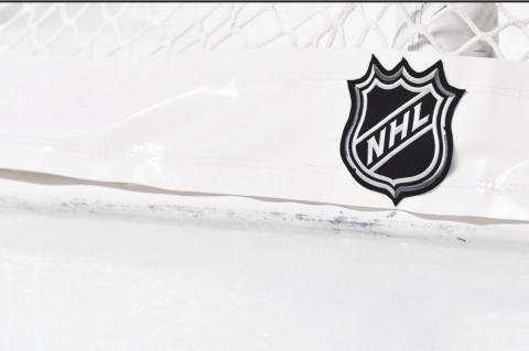 THE NHL LOGO on the back of the goal netting as the Montreal Canadiens play host to the Boston Bruins at the Bell Centre on November 5, 2019, in Montreal, Canada. (Minas Panagiotakis/Getty Images/TNS)